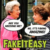 FakeItEasy icon